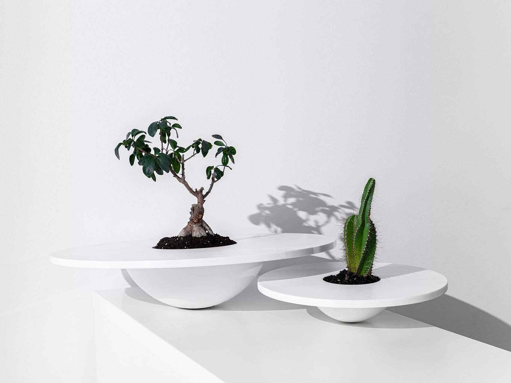 Hat Vase - OWN